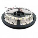 TIRA DE LED INTERIOR/EXTERIOR 24W 5MTS 6500K LUZ FRIA.