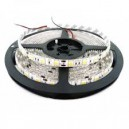 TIRA DE LED DE COLORES RGB 72W 5MTS INTERIOR/EXTERIOR.